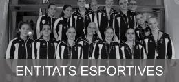 Entitats esportives