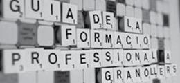 Guia de la Formació Professional