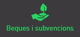 Beques i subvencions